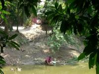 Woman_Washing_at_Water's_Edge,_Bangladeshi_Village